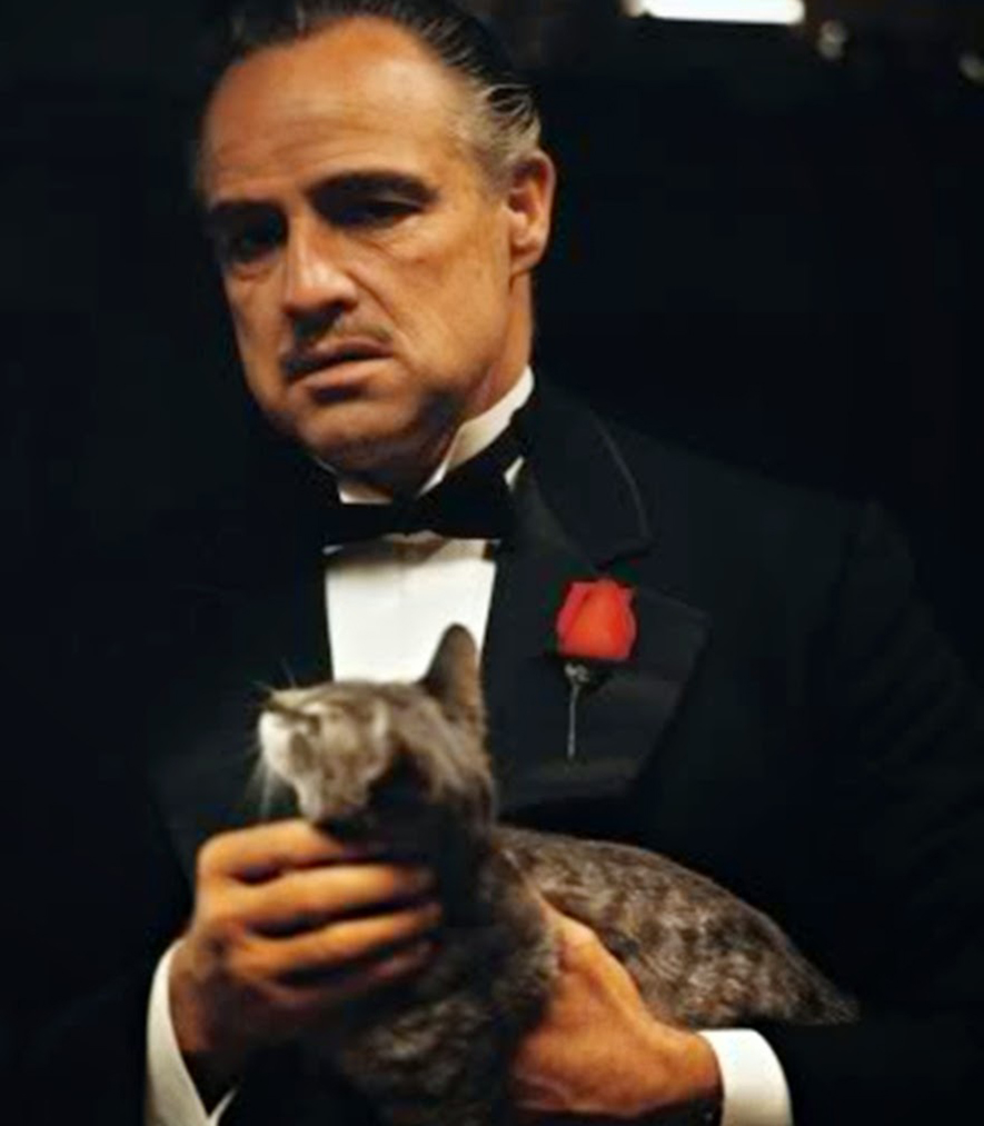strip-me-camisetas-godfather-7